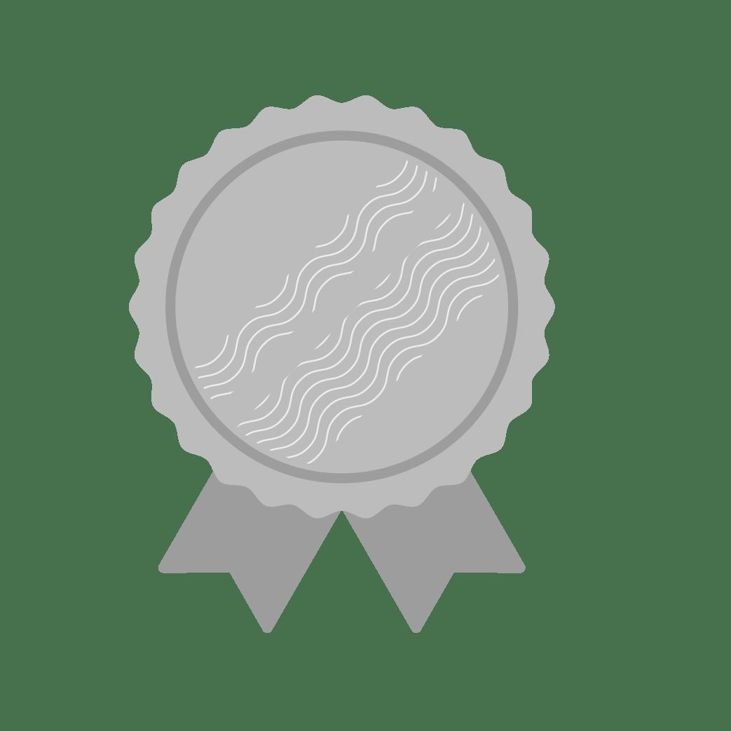 Medal - Silver